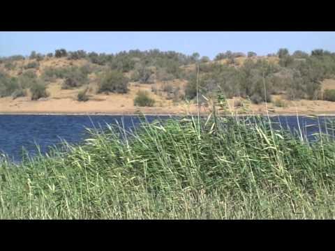 Bukhara Nurota Lake Aydar Uzbekistan 159