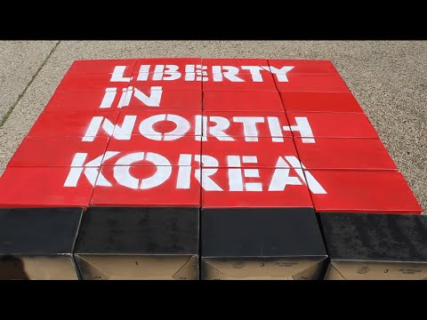 Student Organization Profile: Liberty in North Korea