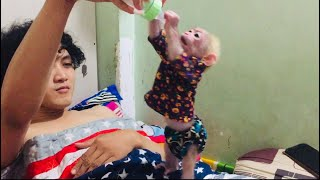 Monkey baby Bi drinks milk and plays with papa at night.