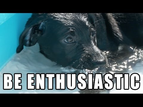 BE ENTHUSIASTIC – Pawsitive Puppy