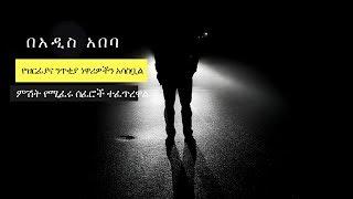 Ethiopia: ዝርፊያና ንጥቂያ በአዲስ አበባ!   በስናፍቅሽ አዲስ