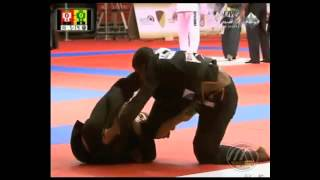 DLR Guard   Berimbolo   Sweep 2