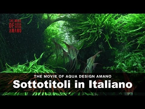 [ADAview] THE MOVIE OF AQUA DESIGN AMANO [side:concept] - Sottotitoli in Italiano