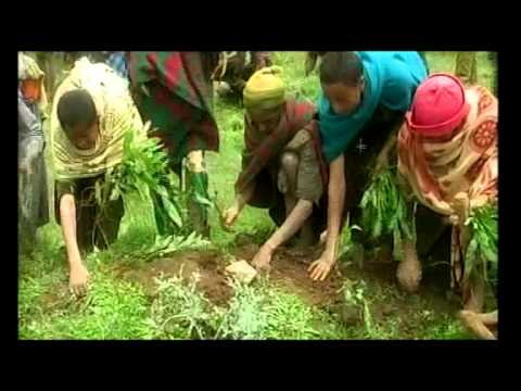 ethiopia towards sustainable agriculture
