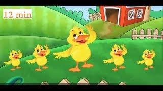 Old MacDonald + Kids Songs   Animal Songs For Children   Nursery Rhymes