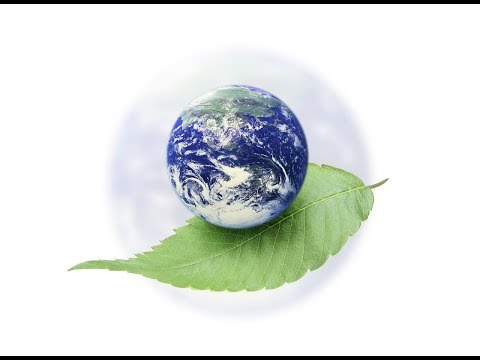 World Environmental Day, Save Earth, Environmental Awareness,