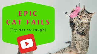 Epic Cat Fails | Try Not to Laugh | Compilation