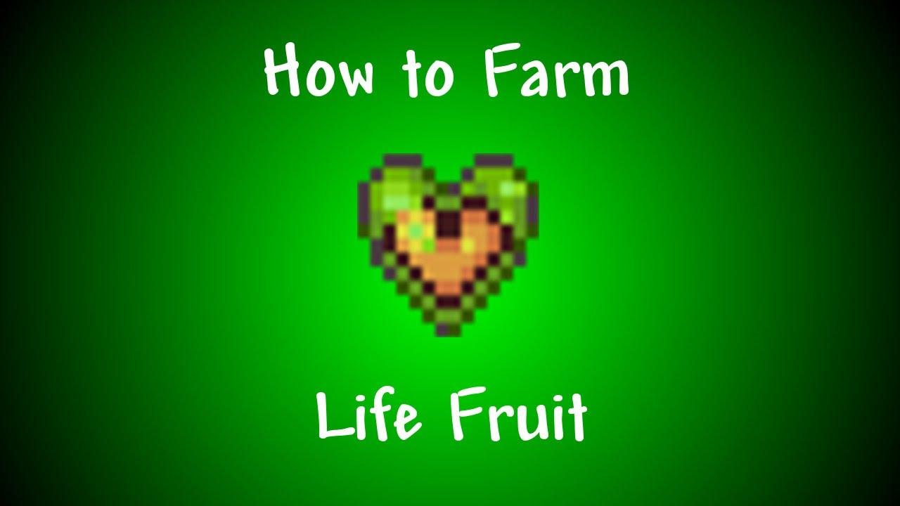 i fruit terraria life fruit