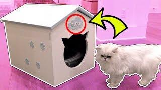 CLOUD'S SECRET HOUSE!