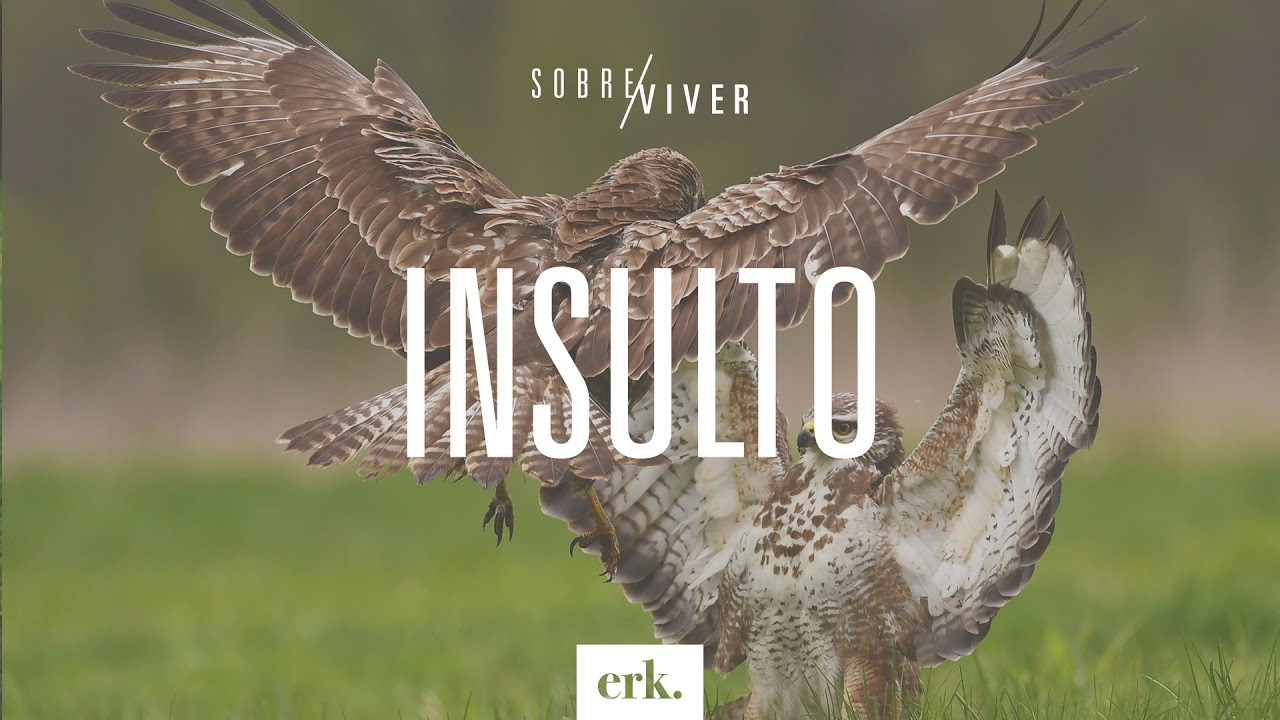 Sobre Viver #251 - Insulto / Ed René Kivitz