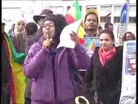 Demonstration in support of co-pilot Hailemedhin Abera in Switzerland Bern February 28 2014