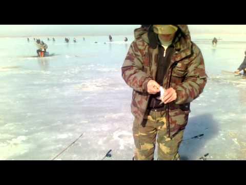 ловля рыбы днестровский лиман