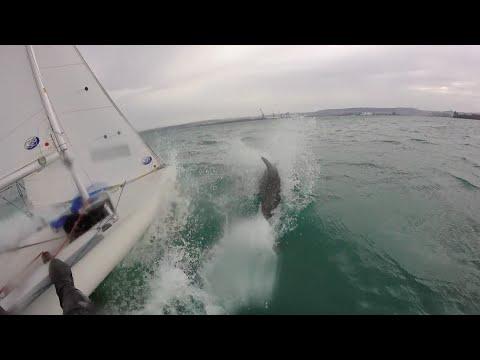 Sailing 420 Hiver 2015