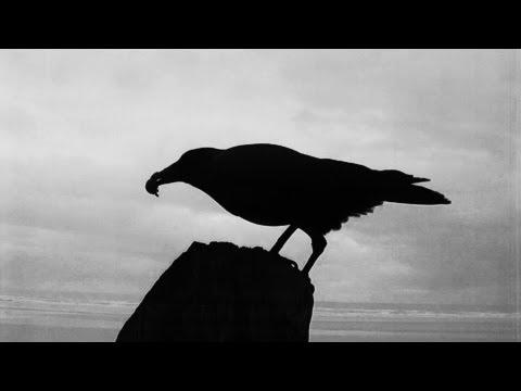 Бах Иоганн Себастьян - Dark And Dreary