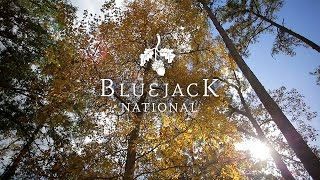 Bluejack National - Foundations