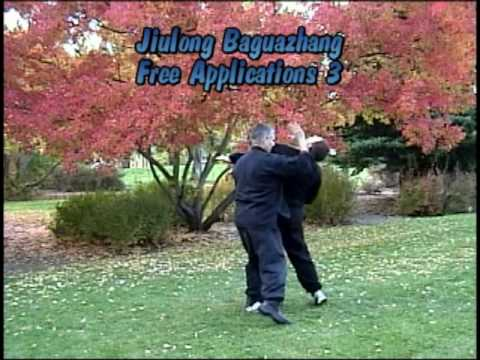 Baguazhang Jiulong:  Application 3 Image 1
