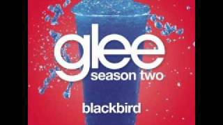 Watch Glee Cast Blackbird video