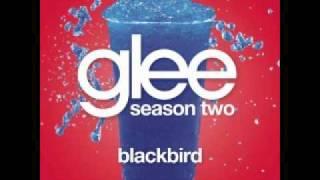 Watch Glee Cast Blackbird video