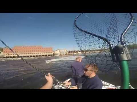 Sturgeon and Paddlefish Fishing - Wisconsin River