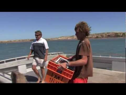How to Catch Crayfish in Kalbarri, Western Australia