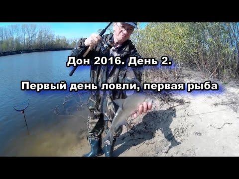 ловля весной на дону видео