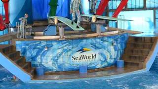 Sea World Diving Show