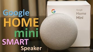 Google Home Mini Review (in Hindi) - Smart Speaker for Rs. 4,999 (+Surprise)