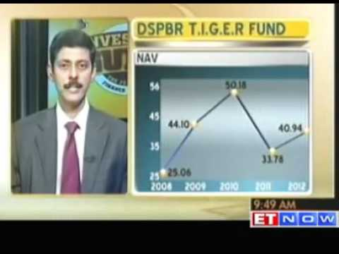 Investor's Guide - Review of DSPBR T.I.G.E.R Fund by Dhirendra Kumar