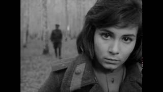 "Andrei Tarkovsky - Best scenes from ""Ivan's Childhood"""
