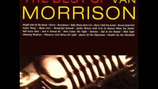 Watch Van Morrison Wonderful Remark video