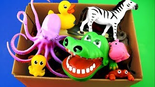 Learn Sea Animal Names and Wild Zoo Animals Names Education Video For Kids