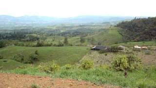 Forest and pasture farm for sale in Perez Zeledon, Costa Rica - 1874