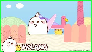 Molang - The beach | Cartoon for kids