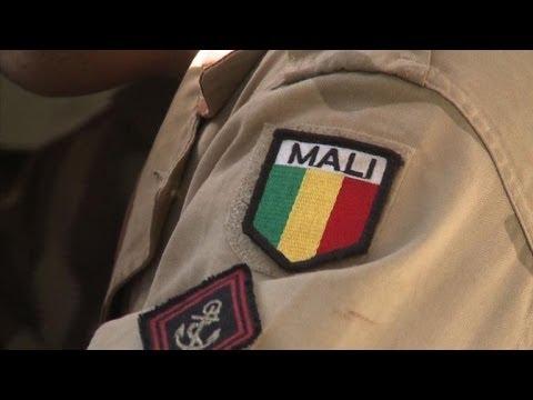Un an après Serval: bilan de l'intervention française au Mali