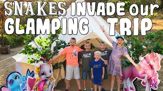 Glamping Invaded by SNAKES!