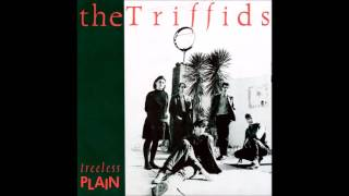 Watch Triffids Plaything video
