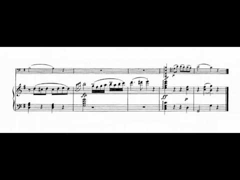 Beethoven 12 Variations For Cello And Piano On see The Conqu'ring Hero Comes Woo 45 video