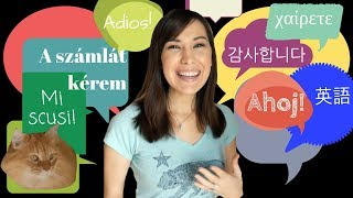 The BEST Travel Phrases!: What Foreign Phrases Should You Learn Before Traveling?!