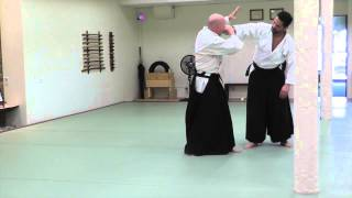 Hawk Durham Sensei [Short]