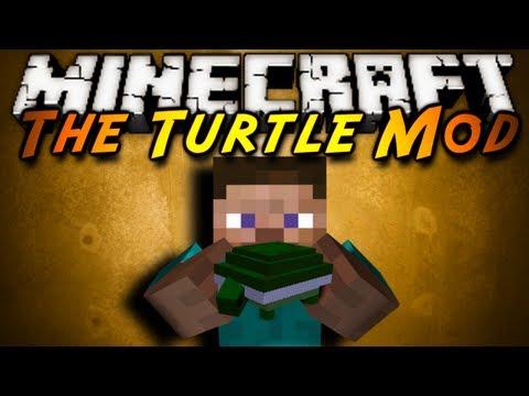 Schildkröten, Wasserschildkröten