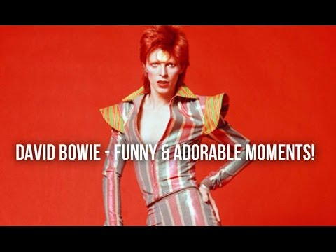 DAVID BOWIE - FUNNY & ADORABLE MOMENTS!