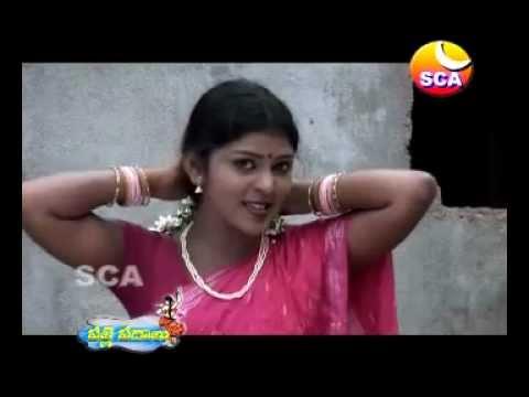 Malle Poolu Petti - Palle Padhaalu video