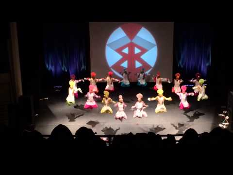 Nachdi Jawani Warriors  Boston Bhangra 2013 HD