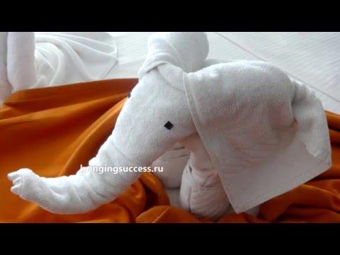 Как сделать слона из полотенца (слоненка)