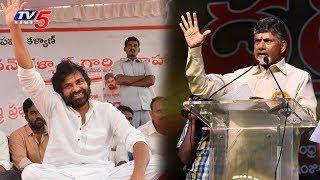 AP CM Chandrababu Naidu Responds on Pawan Kalyan Hunger Strike