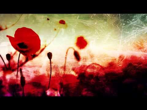 Gojira - Remembrance