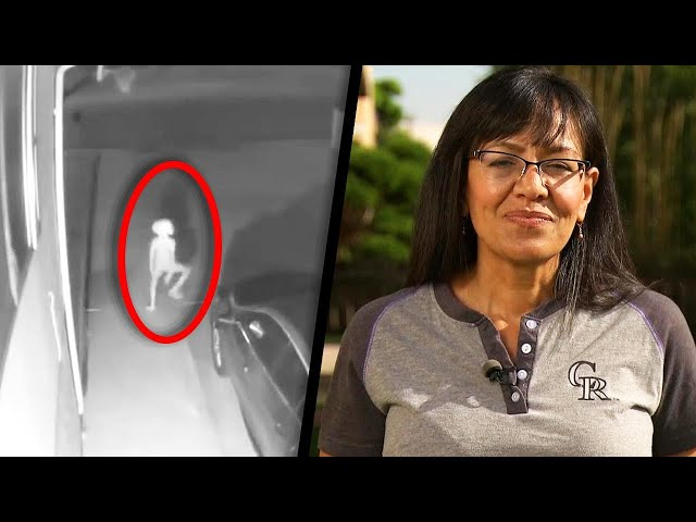 Mom Still Unsure of What Creature Was in Her Driveway thumbnail
