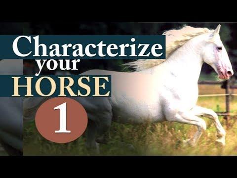 Hempfling - Horse-Characters 1 - All Riders Horsemanship Basics