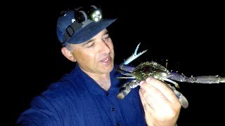 ESTUARY BLUE SWIMMER CRABBING PRAWNS - Night Life Underwater