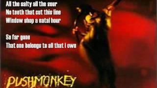 Watch Pushmonkey Cut The Cord video